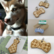 Cropscrotch Dog ID Tag |Vanillapup