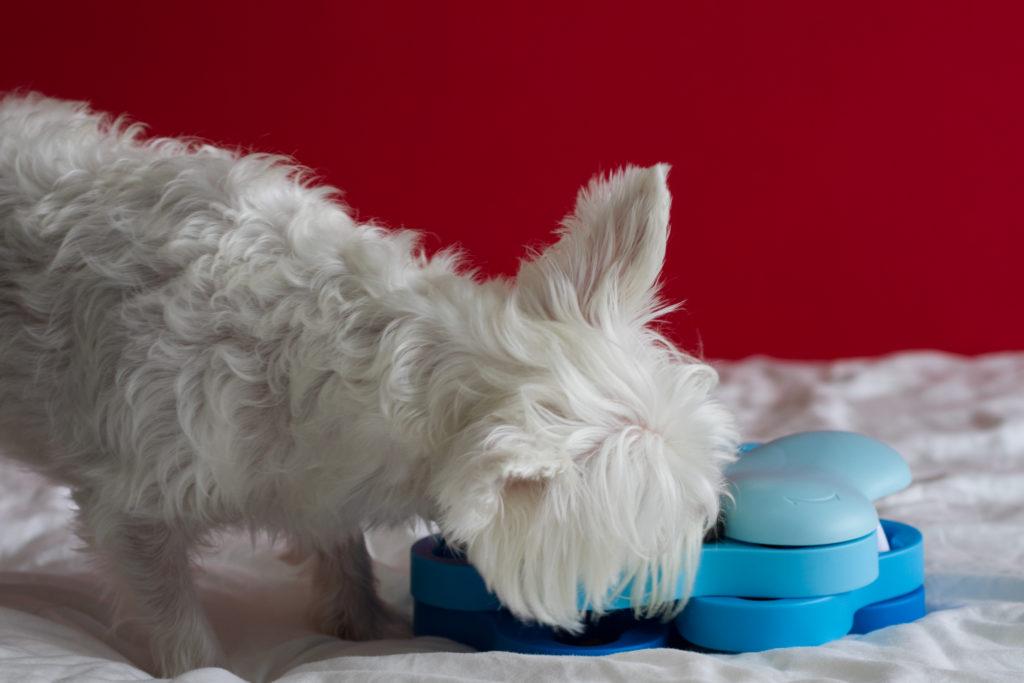 Nina Ottosson Dog Tornado IQ Toy | Vanillapup Picks