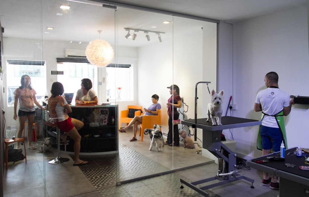 A Dog's Life Salon Singapore Review | Vanillapup