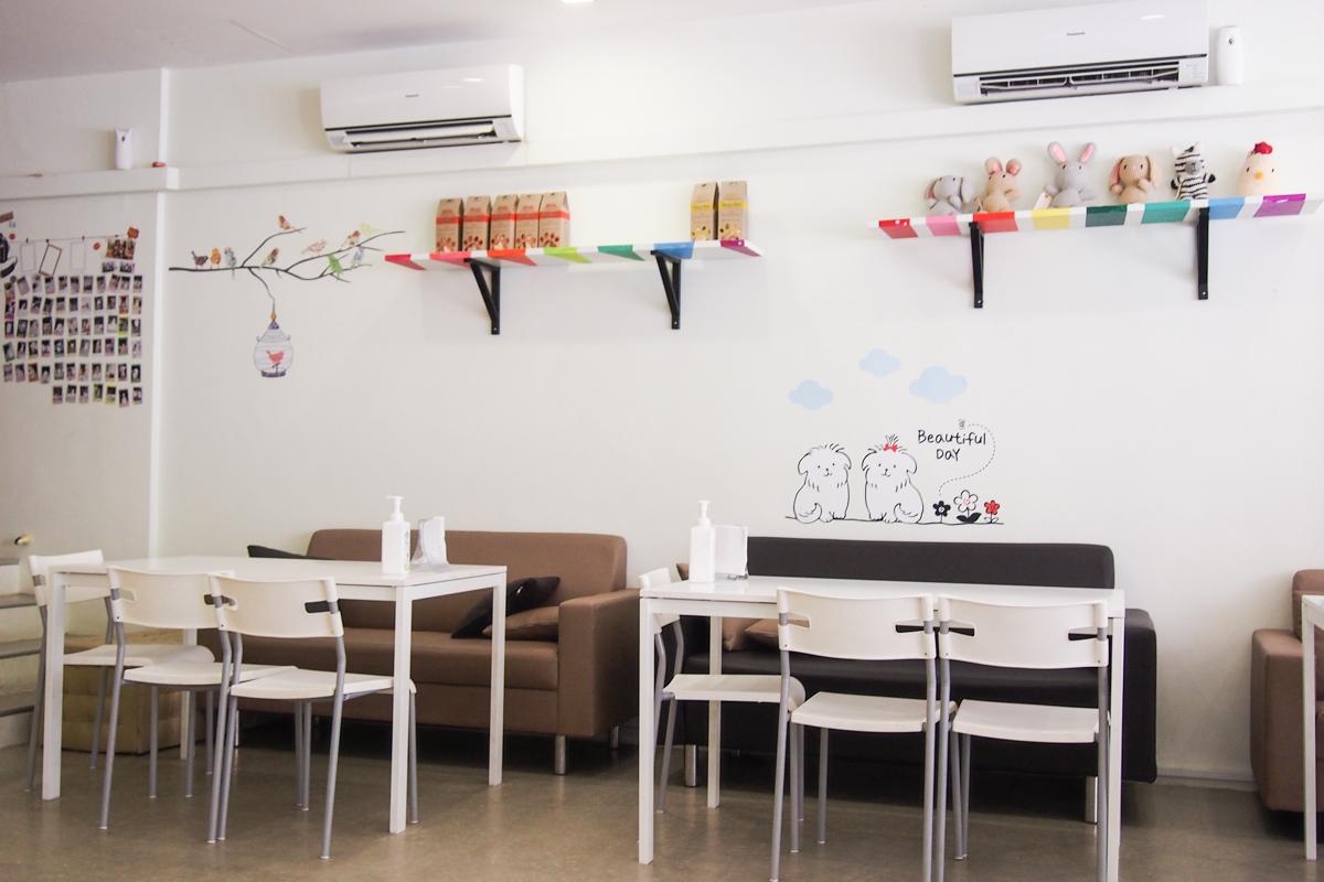 Paw Pet-radise Cafe Review | Vanillapup