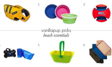 Beach Essentials | Vanillapup