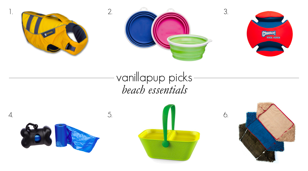 Beach Essentials | Vanillapup