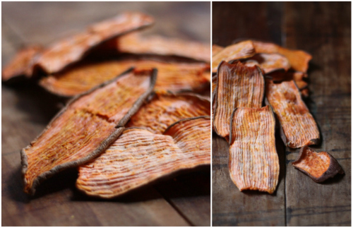 Dehydrated Sweet Potato Dog Treat Recipe | Vanillapup