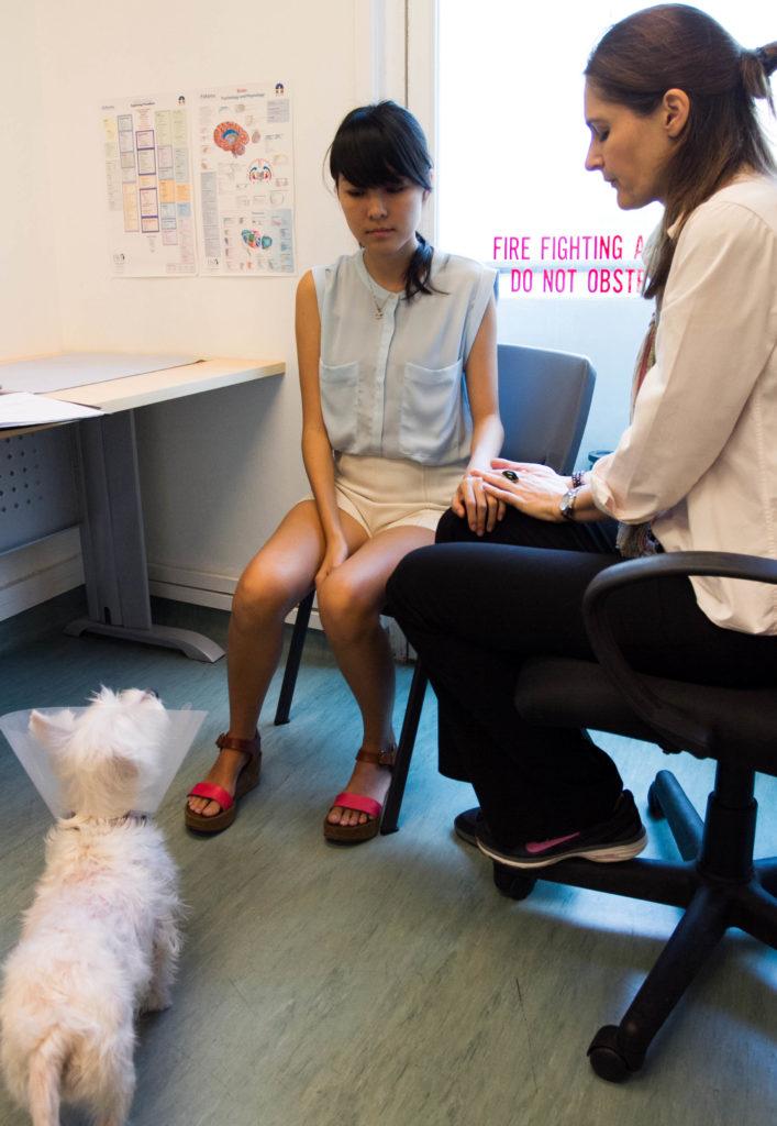 BodyTalk for Animals Process | Vanillapup