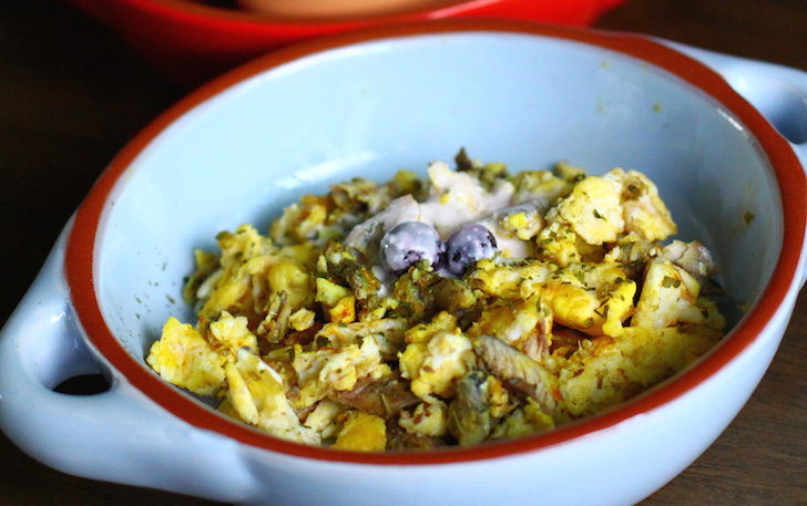 Egg and sardine dog brekkie-dog food recipe by Paws Fur Life | Vanillapup