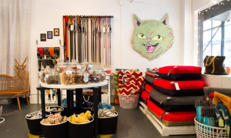 New York Pet Boutique Lovethybeast Store | Vanillapup