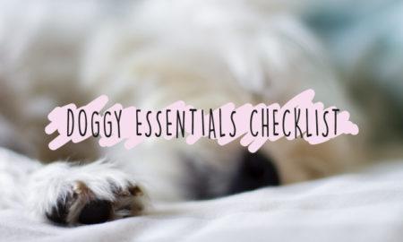 Dog Essentials Banner | Vanillapup