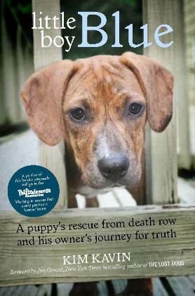 Books for Dog Lovers - Little Dog Blue | Vanillapup