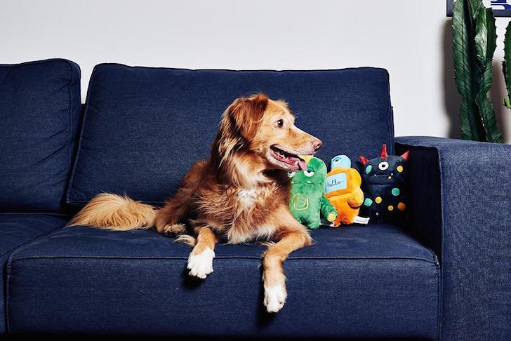 Zee.Dog Alien Plush Toys