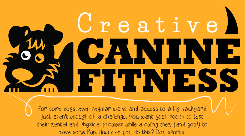 Creative Dog Sports | Vanillapup