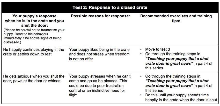 Preparing for Crate Training Test 2 | Vanillapup