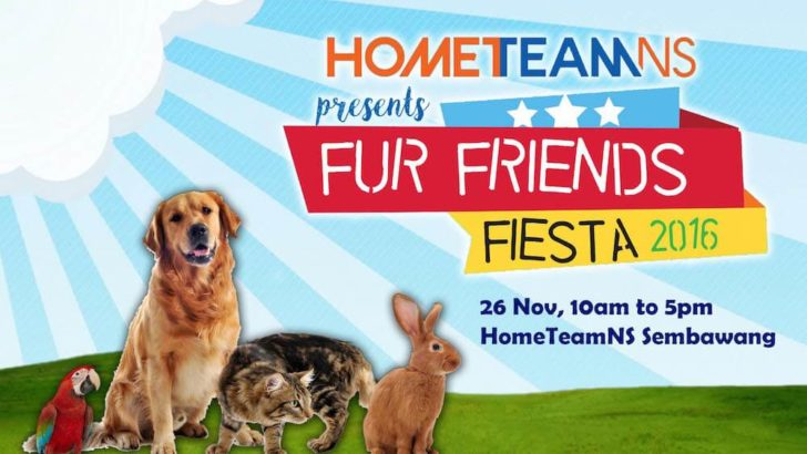 Event: Fur Friends Fiesta 2016 [26 Nov 2016]