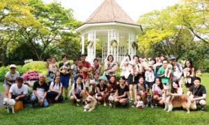 #my10ktoday Fun Walk with Vanillapup Group Photo | Vanillapup