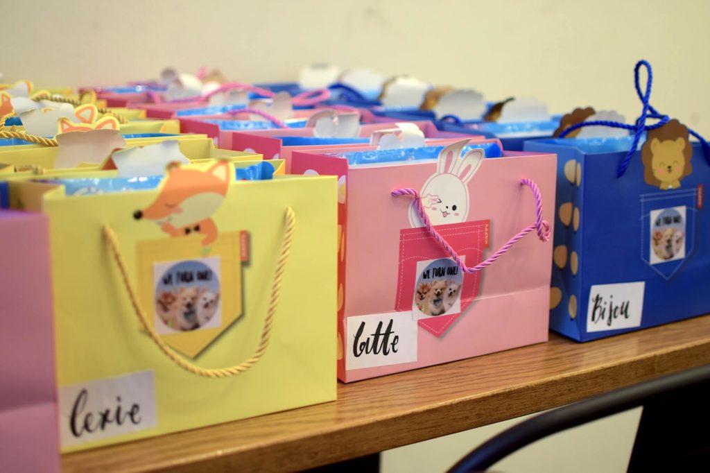 Bailey Birthday Party Goodie Bag | Vanillapup