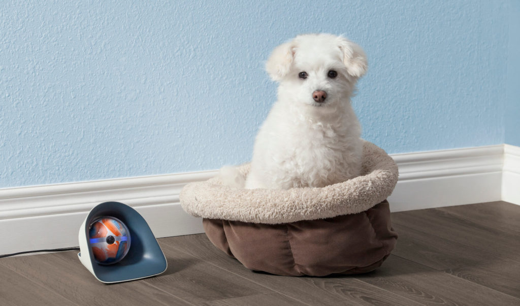 Pebby Auto-dock Charging Kennel