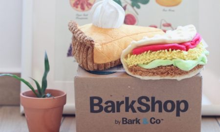 Barkshop Shopping: How to Ship from the US to Singapore | Vanillapup