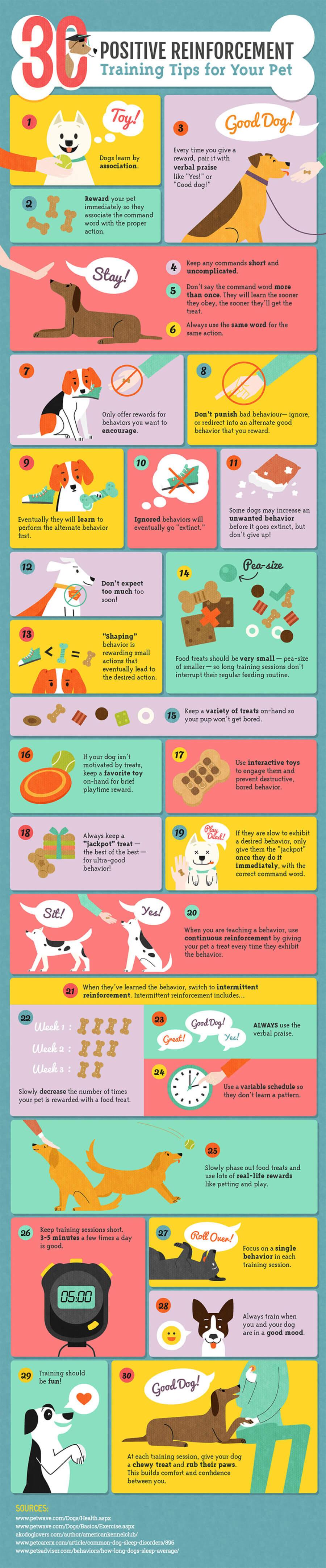 Infographic: Positive Reinforcement Pet Training Tips