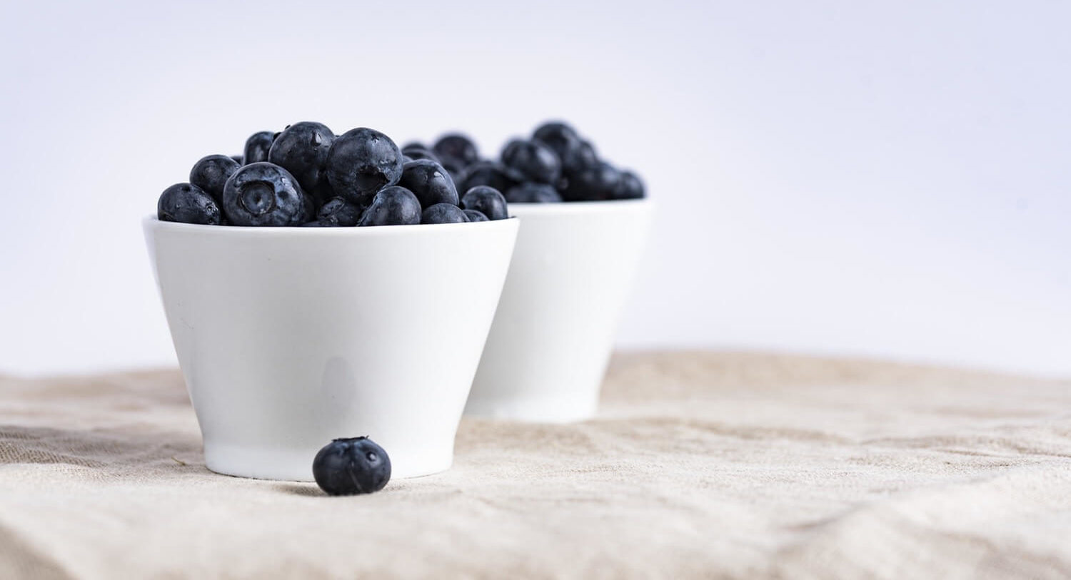 Ask a Vet: Can I Safely Feed My Dog a Variety of Fruits Everyday? | Vanillapup